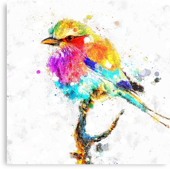 Artistic - IV - Colorful bird by TMarchev