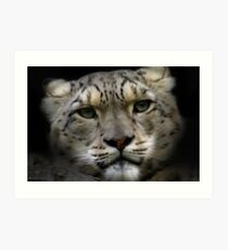 Snow Leopard - Paintography Art Print