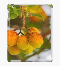arbutus on tree iPad Case/Skin