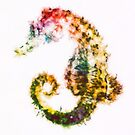 Starry-Tailed Seahorse by Kevin Halfhill