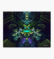 Fractal Fly Photographic Print