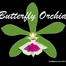 Butterfly Orchid by EyeMagined
