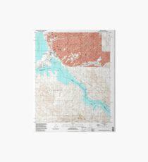 USGS TOPO Map Arizona AZ Lake Havasu City South 312052 1994 24000 Art Board