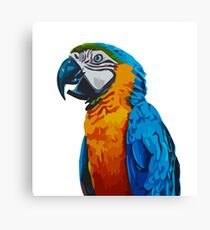 Parrot colorful nature animal Canvas Print
