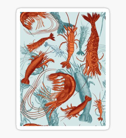 Shrimp - Orange and Turquoise Sticker