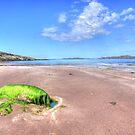 Clashnessie Beach by Alexander Mcrobbie-Munro