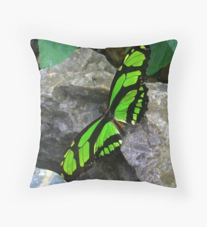 Green butterfly  on Rock Throw Pillow