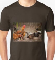 Rhode Island Red chickens Unisex T-Shirt