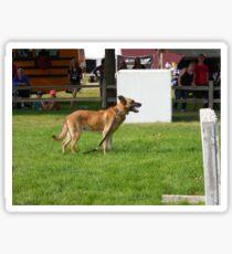 police dog Sticker