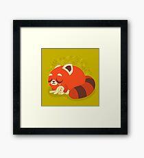 Sleeping Red Panda and Bunny Framed Print