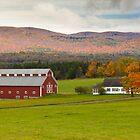 Vermont Farm by Laura Cardello