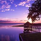 Sunset at Heritage Park by Amy Jackson