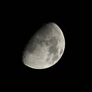 Gibbous Waxing Moon by Sue Robinson