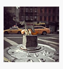fire hydrant - hell's kitchen Photographic Print