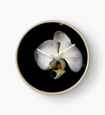 White orchids Clock