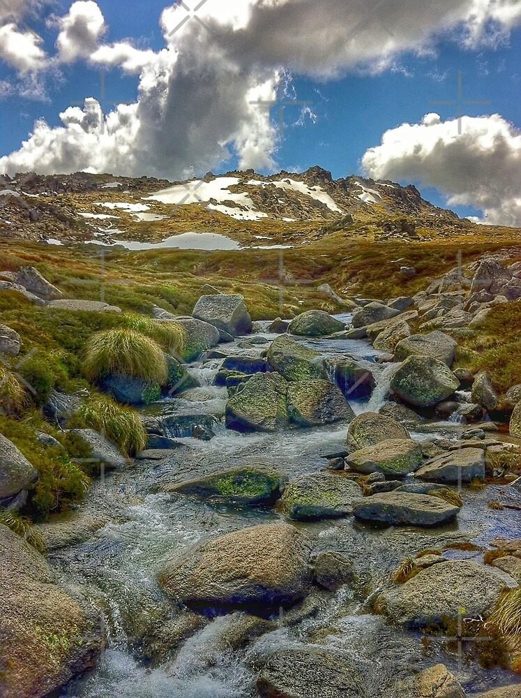 Mountain Stream by eidann