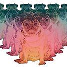 Rainbow Pug Posse  by Jane Oriel