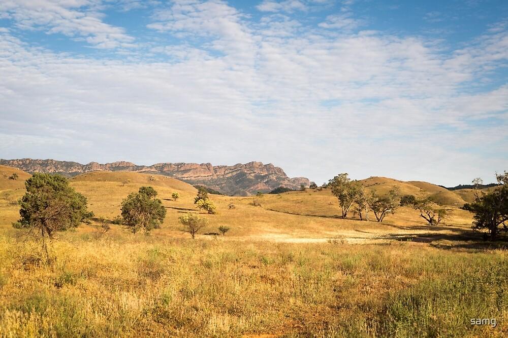 Moralana Scenic Route by samg