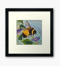 Miss Bumble Framed Print