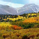 Colorado Landscape von OLena  Art ❣️