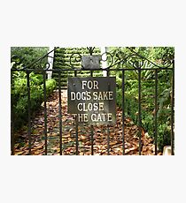 """For Dog's Sake Close the Gate"" Photographic Print"