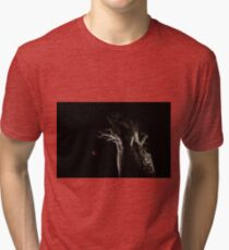 The Blood Moon And The Boab Tree Tri-blend T-Shirt