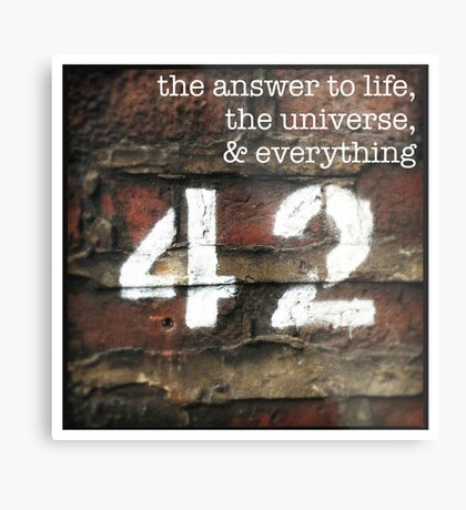 42 - The Meaning of Life Metal Print