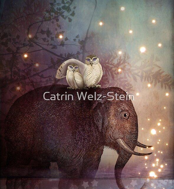 Riding through the night by Catrin Welz-Stein