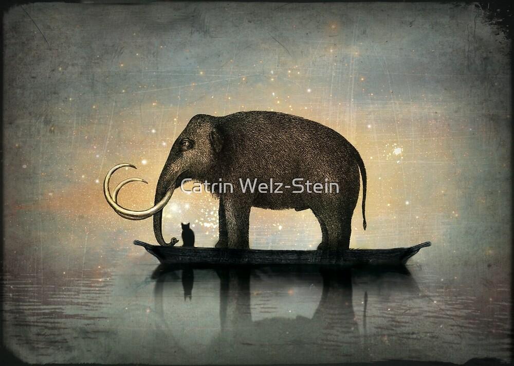 Silent night by Catrin Welz-Stein