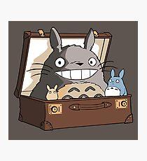 Totoro in Fantastic Suitcase Photographic Print