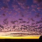 Uluru Dawn by Dieter Tracey