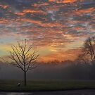Peartree Road Sunrise by relayer51