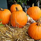 Harvest & Halloween by AnnDixon