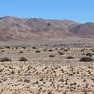 The Namib by poohsmate