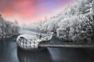 Frosty sunrise in Graz by Delfino