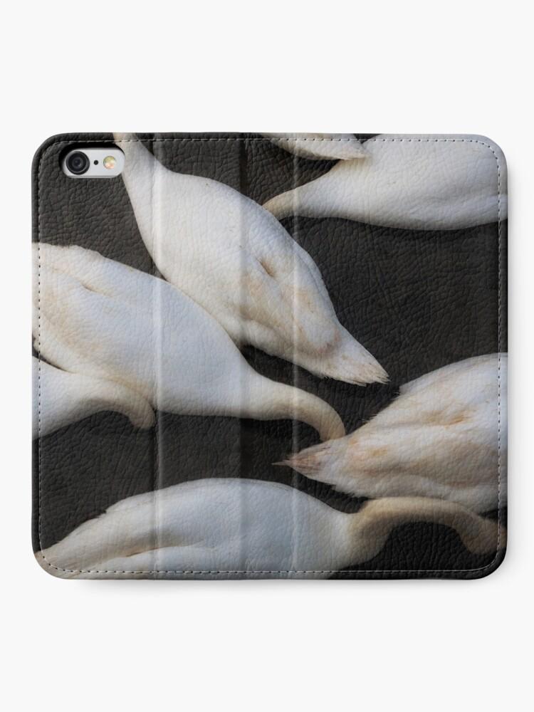 Alternative Ansicht von kopflose Schwäne, die in einen See einziehen iPhone Flip-Case