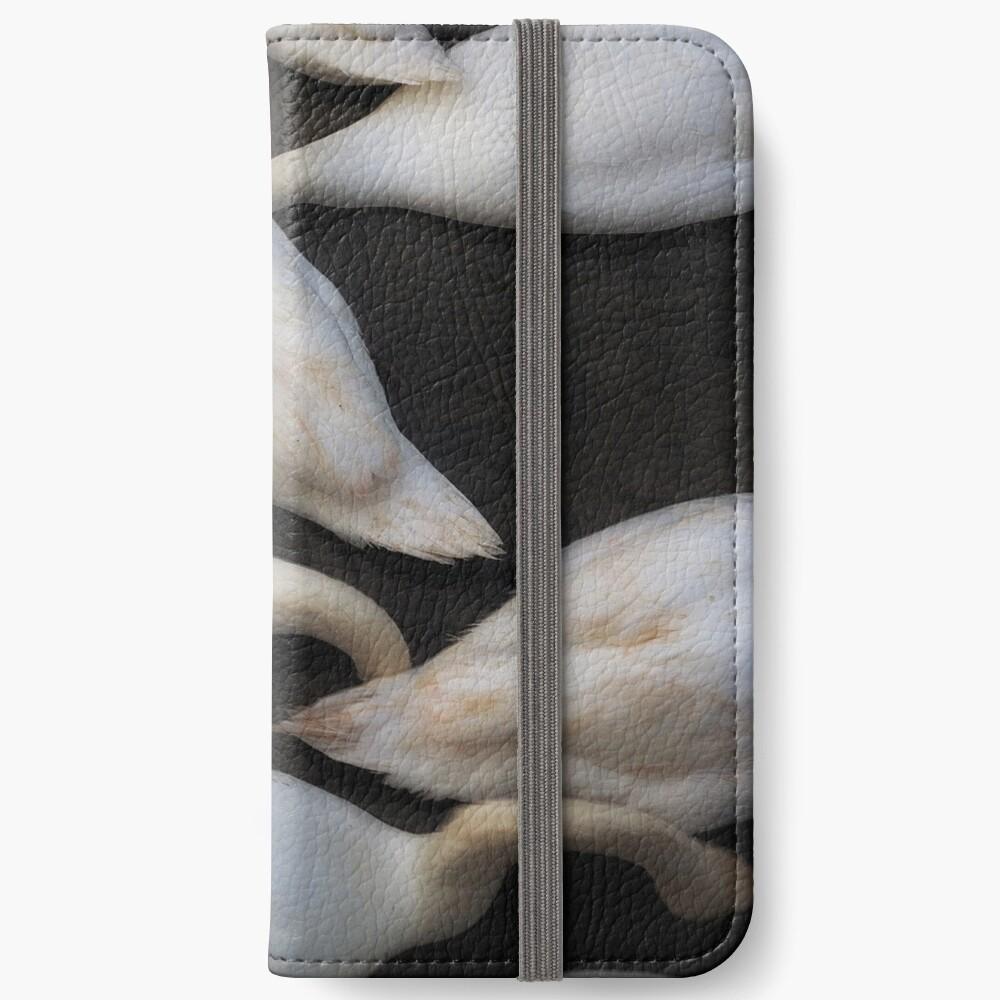kopflose Schwäne, die in einen See einziehen iPhone Flip-Case