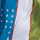 Waving Flag of Uzbekistan From 2014 Winter Olympics by pjwuebker