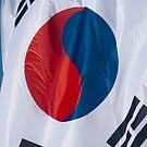 Waving Flag of South Korea From 2014 Winter Olympics by pjwuebker