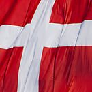 Waving Flag of Denmark From 2014 Winter Olympics by pjwuebker
