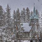 Winter Scene by Andrew F