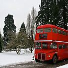 The Red Bus by Andrew F