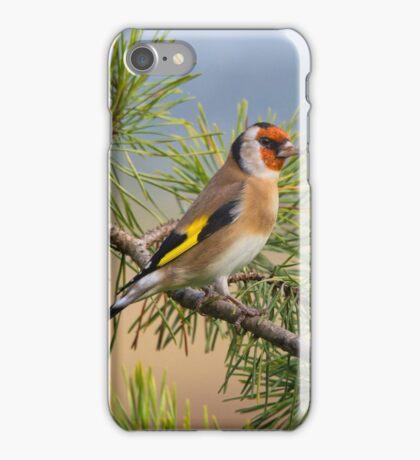 European Goldfinch iPhone Case/Skin