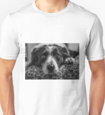 intense look of a border collie Unisex T-Shirt
