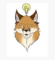 Fox Face White Photographic Print