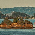 Gulf Islands 11 by Terry Krysak