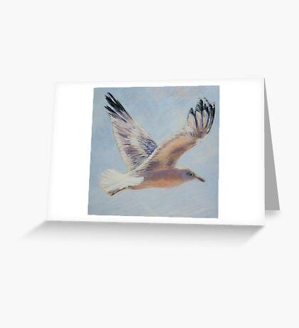Seagull in flight. Elizabeth Moore Golding 2010  Greeting Card