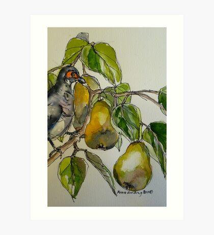 Partridge in a pear tree. Elizabeth Moore Golding 2011 Art Print