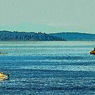 Gulf Islands 17 by Terry Krysak