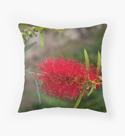 Calistamon Red Throw Pillow